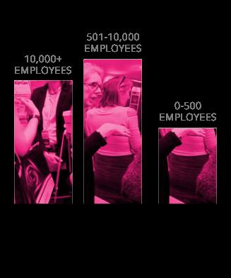 Delegates Company Sizes